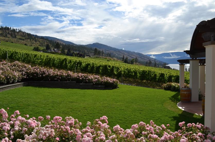 CedarCreek Estate Winery © Amélie Racine