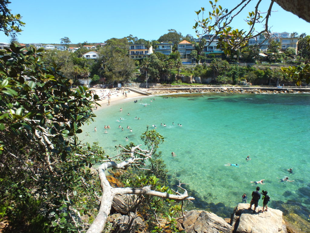 Manly-Shelly Beach