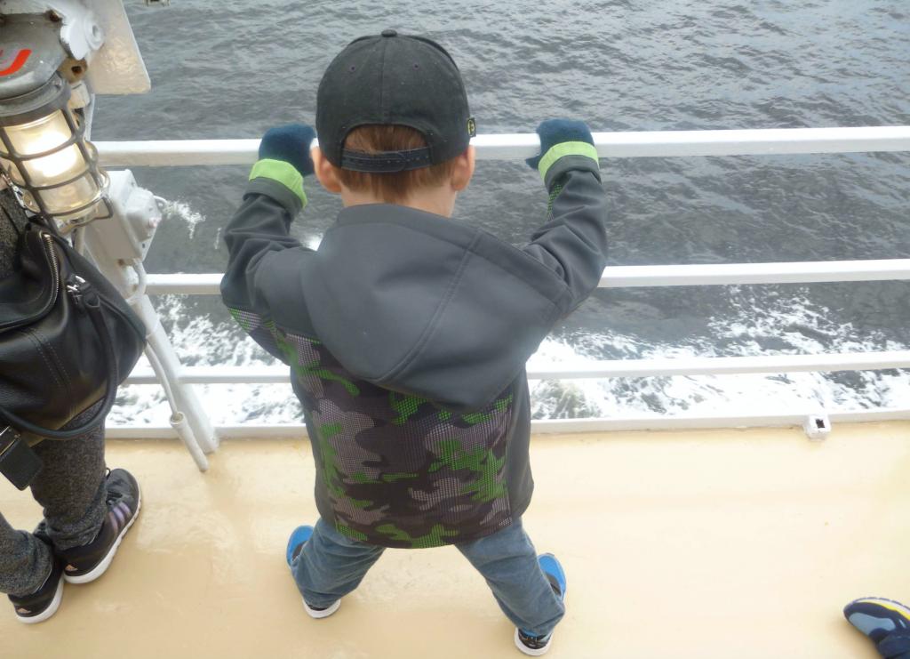 Observation des baleines, Tadoussac